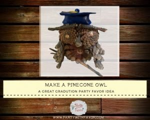 How To Create a Rustic Wise Graduation Pinecone Owl